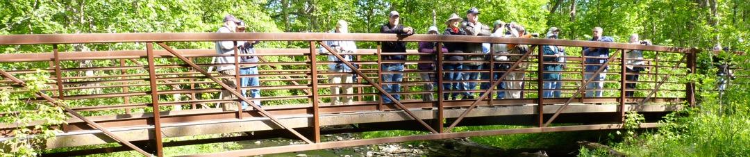 Lake Cook Audubon Field Trips